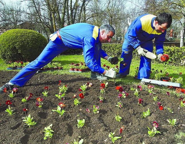 Un decreto prorroga por seis meses el servicio de parques y jardines diario de burgos - Cuidado de jardines ...