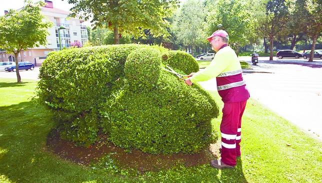 Un oso panda que necesita jardinero diario de burgos for Se necesita jardinero