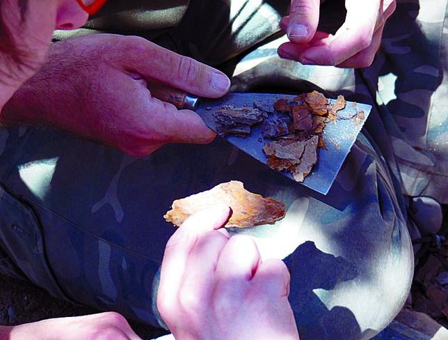 El yacimiento de Horcajuelos se ha convertido en referente paleobotánico. C.A.S.