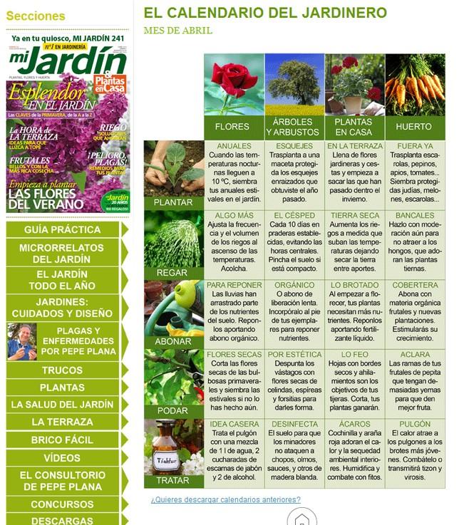 Comienza A Plantar Las Flores Del Verano Diario De Vila
