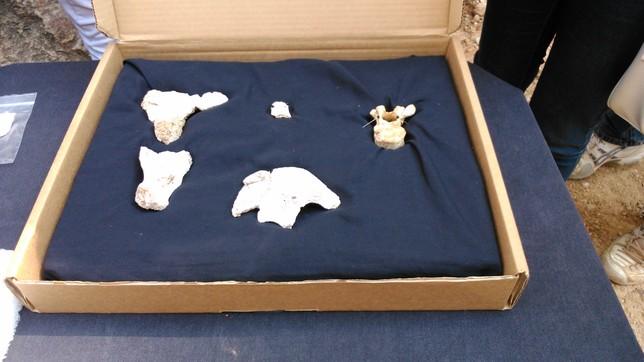 Presentación de los resultados de la campaña 2014 de los yacimientos de Atapuerca. J.D.M.