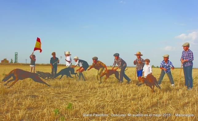 MAZARIEGOS: En Mazariegos hay cantera para seguir con nuestras tradicionales y emocionantes carreras de galgos. FOTO:Marta Moras