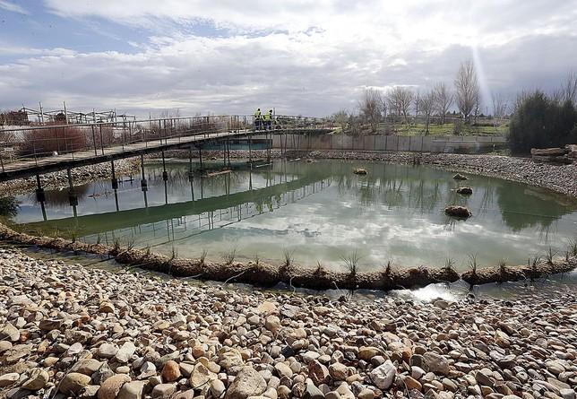 Un paseo por el jard n bot nico la tribuna de albacete for Jardin botanico albacete