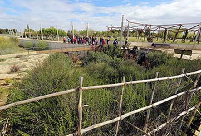 Comienzan las visitas guiadas a las instalaciones del for Jardin botanico albacete