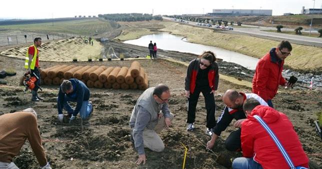Personal de la UCLM, con colaboración municipal, está efectuando una rehabilitación medioambiental en la zona.