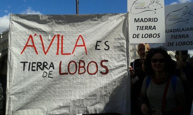 Pancartas abulenses en la manifestación celebrada en Madrid Cedidas