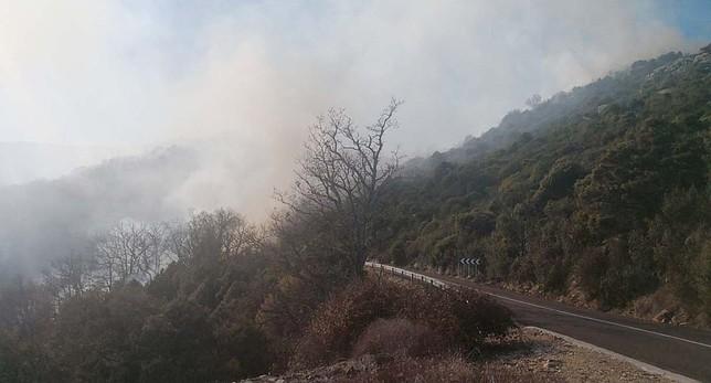 Un incendio en El Real arrasa  una zona de valor ecológico