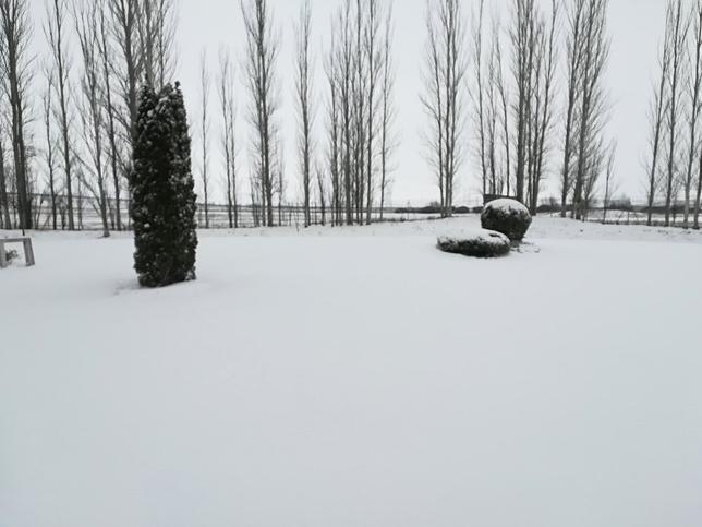 Nieve en Quintanadueñas.
