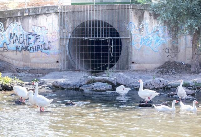 Vertidos de aguas residuales en más de 20 puntos del río