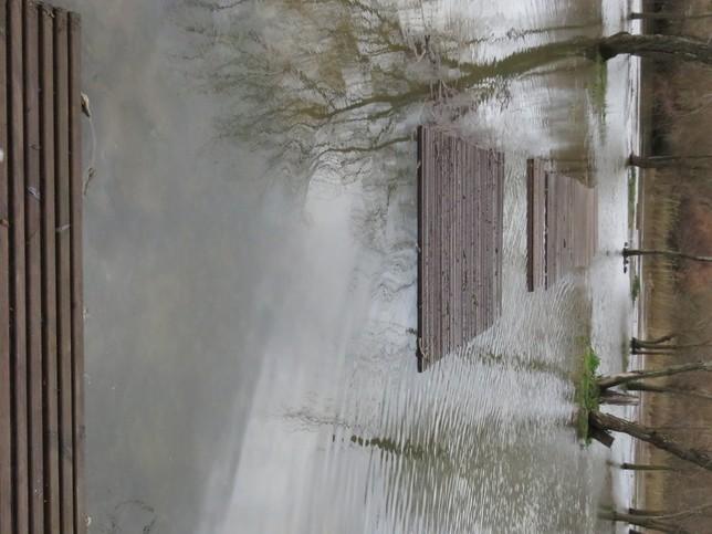 Las lluvias multiplican por cuatro el caudal del Tajo