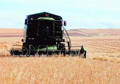 7.159 agricultores se beneficiarán del anticipo de los pagos de la PAC