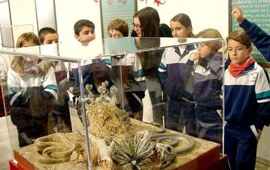 El Museo da aire infantil a la Navidad