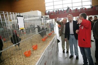 Ramos destaca el positivo impacto económico de la feria de avicultura