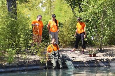 Más de 1.200 voluntarios colaboran con el patrimonio natural