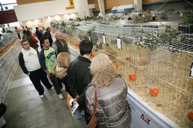 Más de 5.000 personas visitan la feria de avicultura