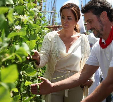 Clemente augura una cosecha de vino de calidad «excepcional»
