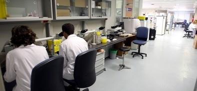 El Centro de la Gripe trabaja en una vacuna definitiva con personas inmunes al virus