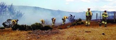 Controlado un incendio que quemó 1,3 hectáreas de pasto y entró en un pinar en El Herradón