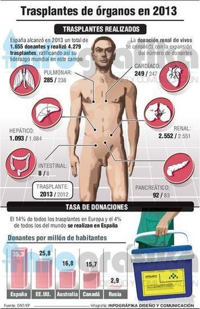'Números 1' en trasplantes