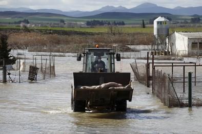 Tejerina anuncia 60 millones en ayudas por la riada del Ebro