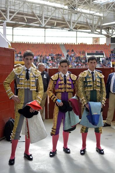 Triunfal novillada en Illescas