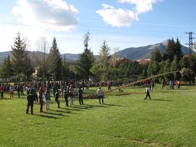 La 'Pinada del Mayo' regresa la próxima semana a Velilla