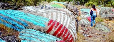 La piedras de Ibarrola serán visitables al final del verano tras acondicionarse el acceso