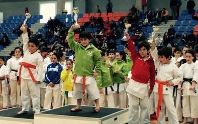 Los abulenses conquistaron 16 medallas en el Campeonato de Castilla y León