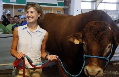 Ayudas de 300 euros por vaca en las explotaciones que no sean rentables