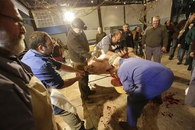 Más de 200 personas asisten a la matanza de Casa Pepe
