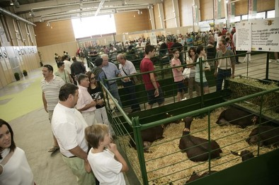 CapraEspaña acogerá el concurso de queso de cabra más relevante del país