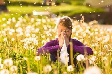 Los alérgicos padecen este año la peor primavera desde 1995