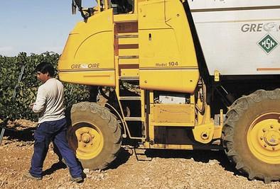 La provincia es la única de Castilla-La Mancha que pierde afiliados extranjeros