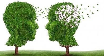 El alzheimer puede empezar a atacar a partir de los 30 años