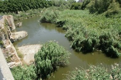 La Plataforma plantea la creación de un Parque Natural en el Tajo