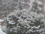 Valladolid amanece blanco en Viernes Santo