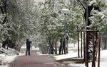 La capital vallisoletana amanece con una nevada la mañana de Viernes Santo