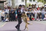 Exhibición de la Policía en Recoletos