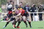 La belleza del rugby
