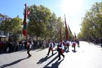 Desfile de los pendones leoneses por Valladolid