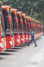 Presentación de los renovados autobuses urbanos de Burgos.