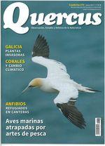 Aves marinas atrapadas por artes de pesca, en Quercus