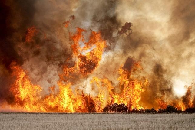 Incendio forestal Nivel 1, comarca del Arlanza