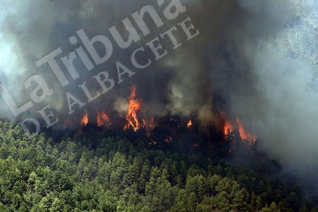 Indendio forestal en Yeste y Molinicos