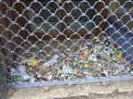 en la casa la vega 29, barriada inmaculada, en este antiguo local de textiles marin se acumula la basura y desechos organicos tras sus rejas, esto desprende un olor de podrido atravez de toda la calle, es bastante desagradable y mas para los que vivimos encima de este local
