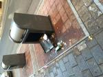 Así amanecen todos los domingos los contenedores de basura situados en la calle San Agustín. Los ilustres vecinos de los bares de la zona los abren para tirar sus basuras con mayor comodidad con el consiguiente peligro, sobre todo para los niños. Y no todo lo tiran dentro ....