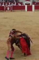 Hola les mando esta foto del matador ROMÁN en su primer toro a la hora de entrar a matar.