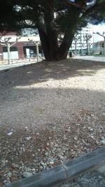 Así luce la remodelación del pequeño parque que hay en la Avenida Cantabria, junto al Colegio Virgen de la Rosa. Se rompió el banco que circundaba el árbol, y lo arreglaron convirtiéndolo en un pedregal.Y ya son varios meses.
