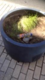 No se para que estan las jardineras repartidas por la ciudad, si no son capaces de adecentarlas ni en  primavera. Para eso es mejor que las quiten, ya hay papeleras para echar la basura......