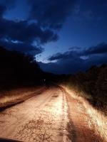 Carretera CR-5021 Cabezarrubias-Brazatortas insegura